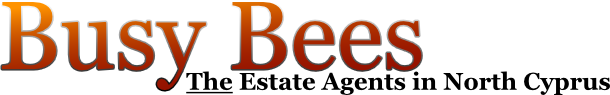 Busy Bees Text Logo
